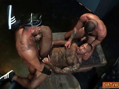 Muscle bear threesome and cumshot