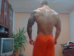 Muskelausstellung