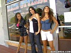 Jenaveve la Jolie , Olivia O'Lovely , Lacey Duvalle sono tre perfetta buon corpo