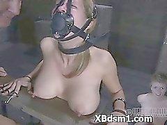 Bdsm Babe Erotica Onderhoudend Pain