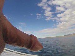 Hahn auf Tour auf und unter dem Wasser 50 Minuten