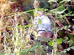 Meretriz de com a clientes apanhado em bosques