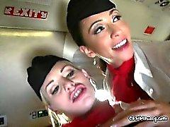 Matkustajan loiskevoimat Kahden Slut lentoemäntä ja