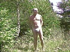 Wald 7.