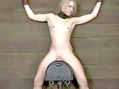 BDSM sub strapped to a sybian