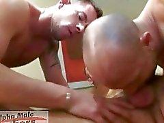 Drie vervelende homo bussinesmen met luide harde sex