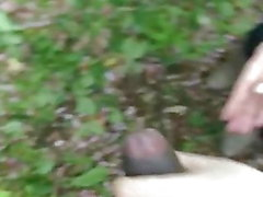 Cadela japonês empurrando-me fora na floresta Yokohama