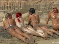 arena oscura y - Ariel , a Melisa , Chikita y Blanca