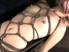 Crotch rope bondage keeps dildo in ass