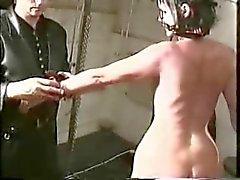 britse pijn aanwezig paard slaven