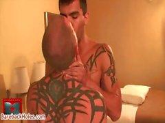 Salbei Daniels Shane Stone in Homosexuell