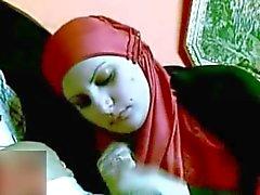 Egypti hijabin imevän munaa