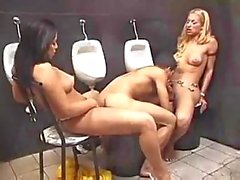 Toilet sex with dirty Tgirls