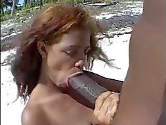 Iso ruskea nipat & B Ig ruskea kullia rannalla .