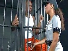 Zwarte rammen in een gevangenis