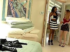 Interracial Lesbians Stella Cox and Nadia Jay