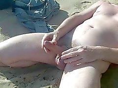suuret skotlanninterrieri hana näyttää rannalla oleva