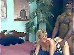 Bi - seksuele Party