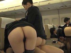 Dell'ospitalità anche Timido di Oma Co aereo a 4 inverso