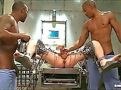 Videos tube BDSM Populares