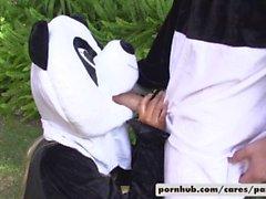 Bridgette B & Alex D Estilo Panda