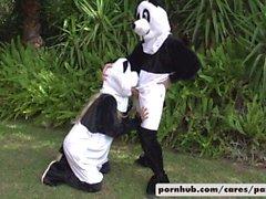 Bridgette B & Alex D Panda Estilo