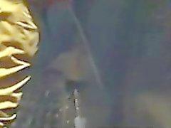 mijar de espião