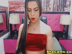 Horny Shemale Wanking her Big Dick so Hard On Cam