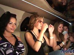 Foxy babes lura runt i en limo