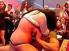 Party Girls Cock Sluts
