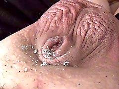Kleine Penis Asbak