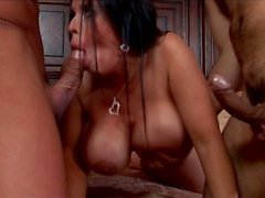 Stor Tits trauma ( PMV )
