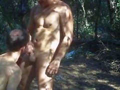 In a Neighboring Forest 2