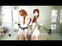 La hiedra Nieve y Lucy de Ohara