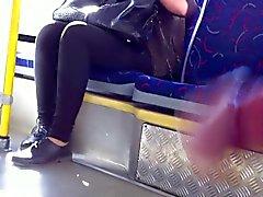 bus (b)