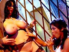 Las grandes latinas Alexis Amore y Sienna West en el sexo lesbiano