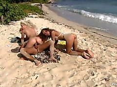 Lauren mayo y Nesty Disfrute de la playa durante el tratamiento con un Dick en su Twat