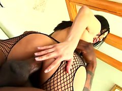 Sensuous brunette in fishnets welcomes a black stick up her needy ass