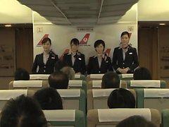 Dell'ospitalità hanno anche Timido di Oma Co aereo a 4 inverso