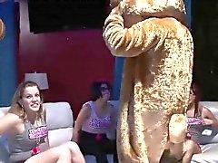 Девочки сосать член и поп о своих синицы