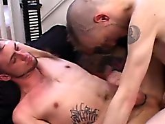 bareback gay blowjob gay gays gays en hd gays gays